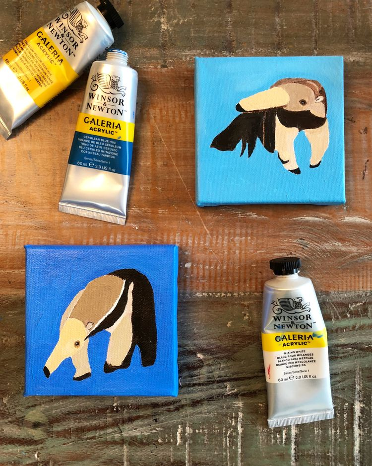 anteater kind ーーーーーーーーーーーーーーーーー - igimidraws | ello