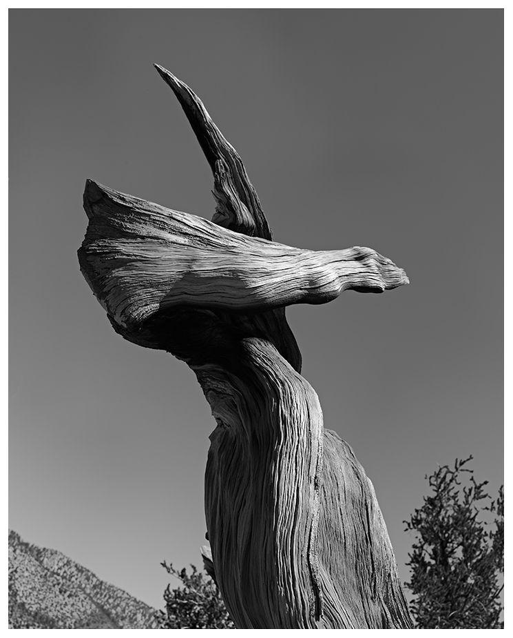 Untitled Khris Rino (August 201 - khrisrino | ello