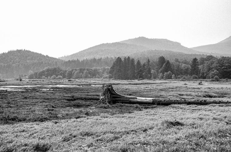 Dosewallips State Park Washingt - ke7dbx | ello