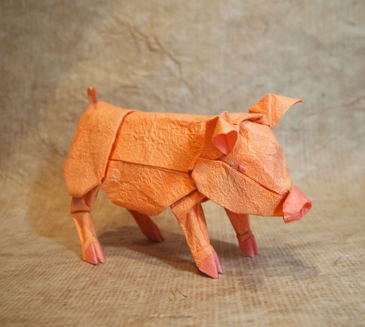 Hope Showing Origami Pigs - origami - origamidotme | ello