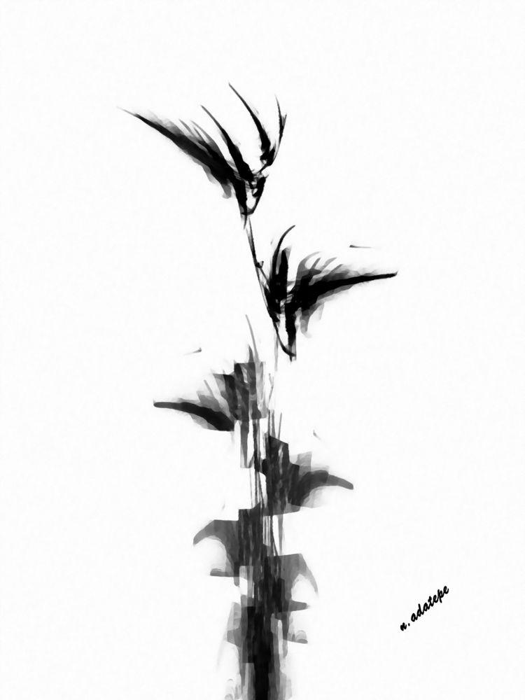 flower dedicated patience exper - nadatepe | ello