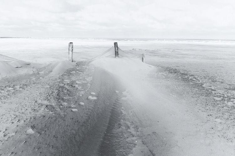 blackwhite, beach, mood, soul - loyph   ello