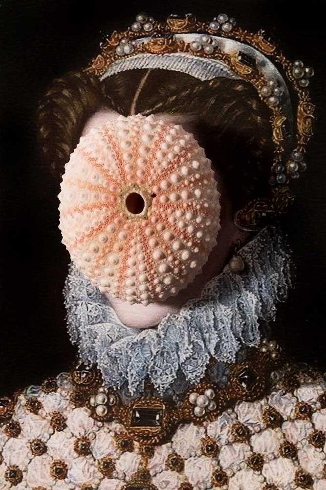 Malignant Thoughts - texture, seashell - zeren   ello