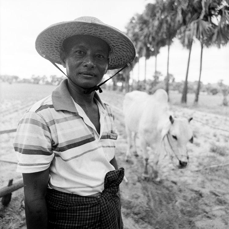 San Win. farmer Singu. son fath - otherworlds | ello