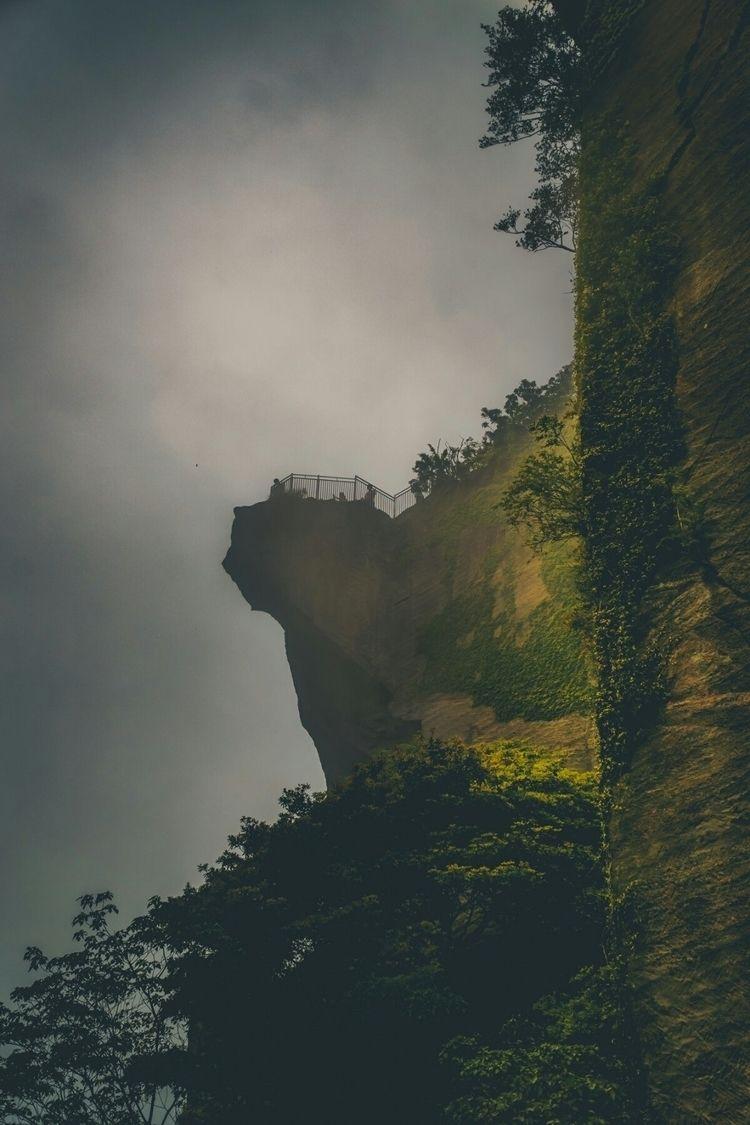 Gorrillas mist, gorillas, stuff - fokality | ello