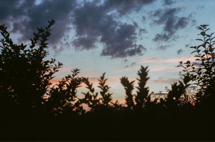 Poland - analog, film, 35mm, nature - tatao | ello