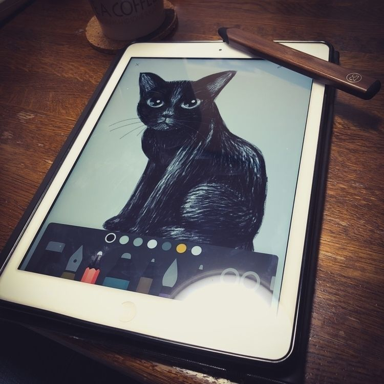 Pencil. Black cat - fiftythree, cats - batkeiart | ello