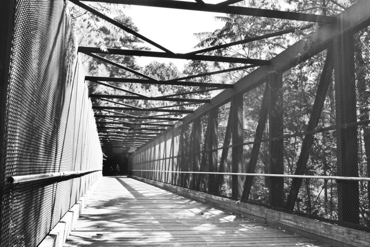 Silver Comet Trail - bridges, sunlight - drewsview74 | ello