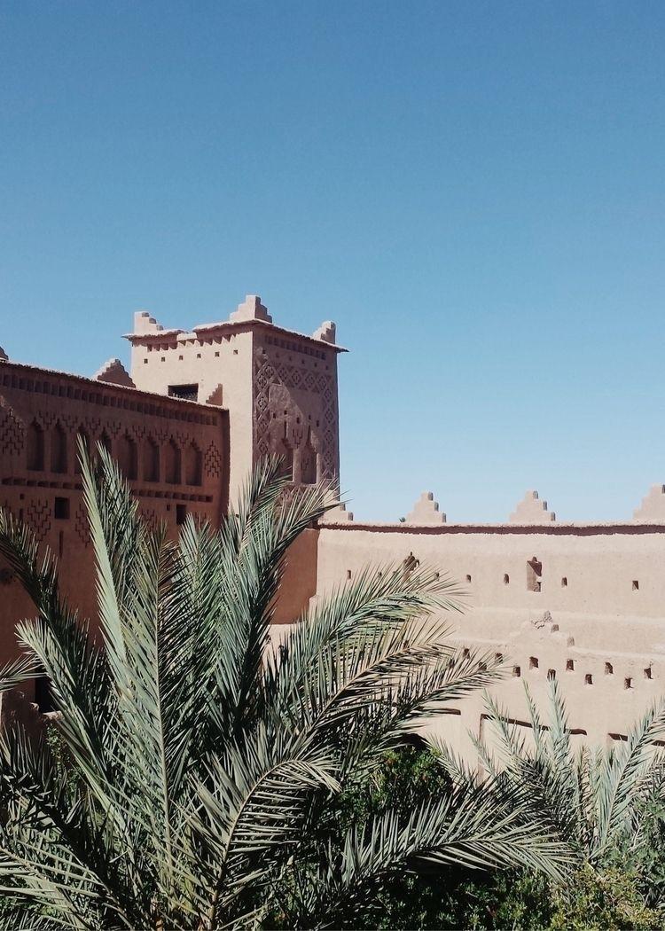 Zagora - palm, marocco, Zoco, arabic - lapremioqueen | ello