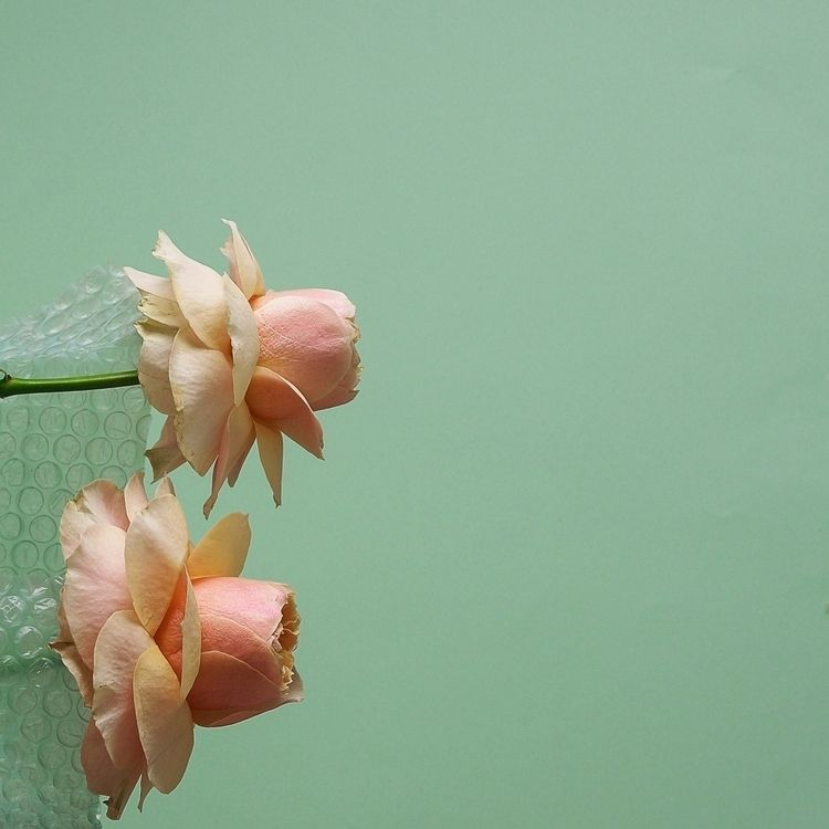 wait  - mintgreen, pastels, era - mrw_mrw | ello