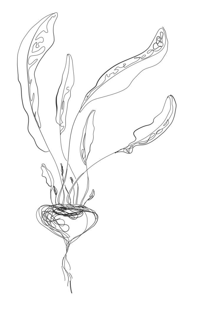Art Nouveau beetroot wind - vegan - rohelinevilla | ello