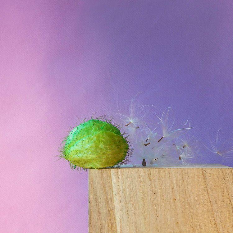 Ejaculation  - experiment, pink - mrw_mrw | ello
