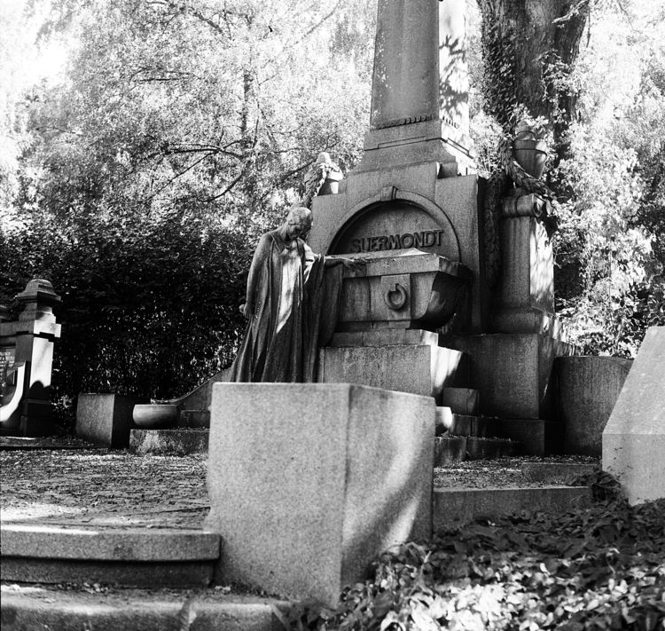 Westfriedhof 1 Camera: Yashica  - walter_ac | ello