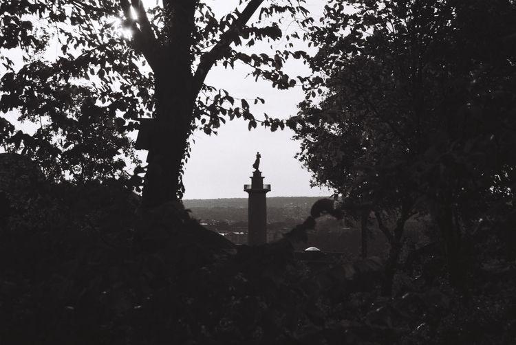Peek 〜 Gothenburg, Sweden - filmphotography - ferreira-rocks | ello