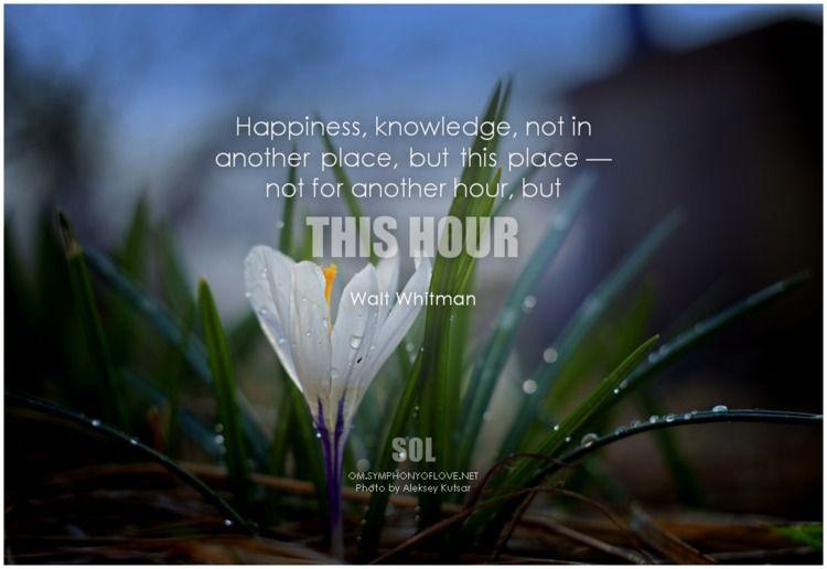Happiness, knowledge, place, pl - symphonyoflove | ello