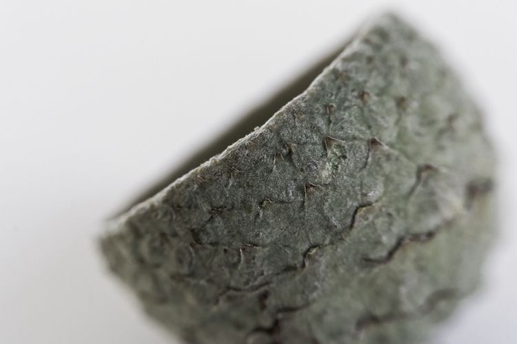 Mortar - photography, macro, shell - marcushammerschmitt | ello