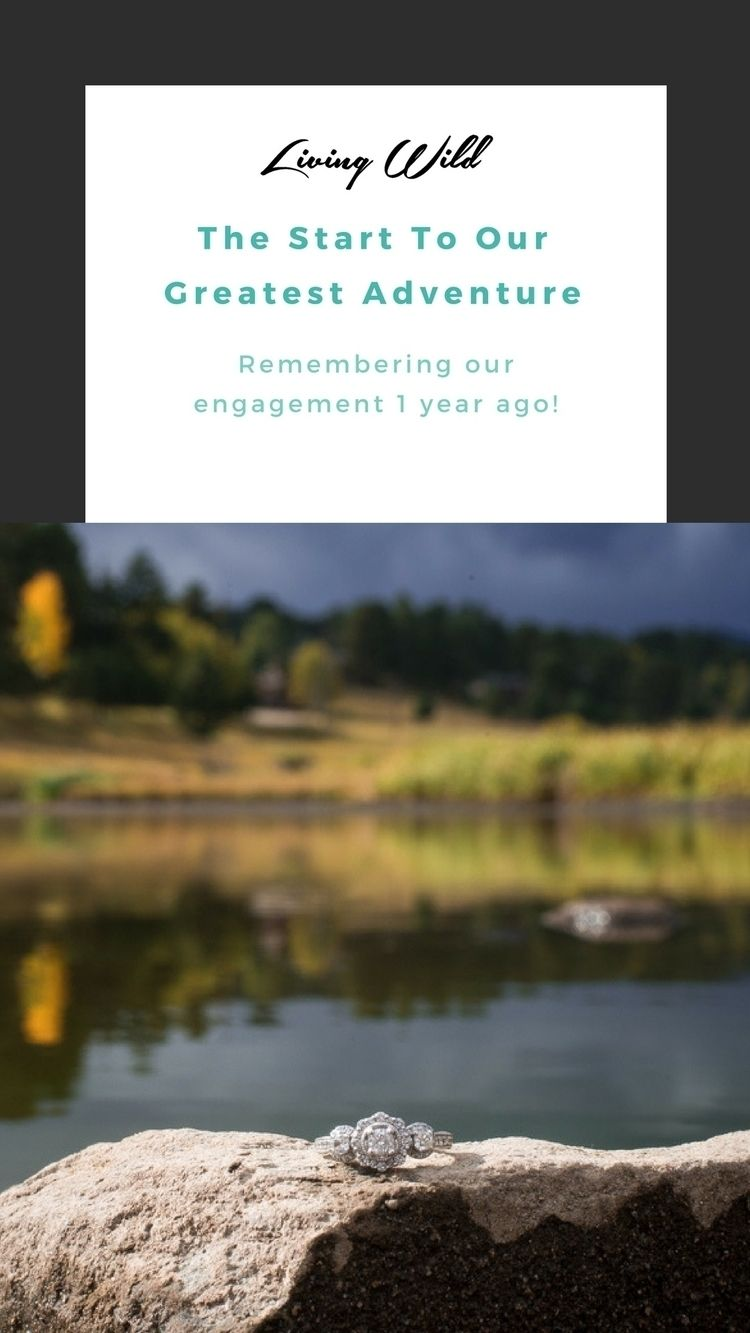 ADVENTURE Celebrating 1 year en - katieleighhutt | ello