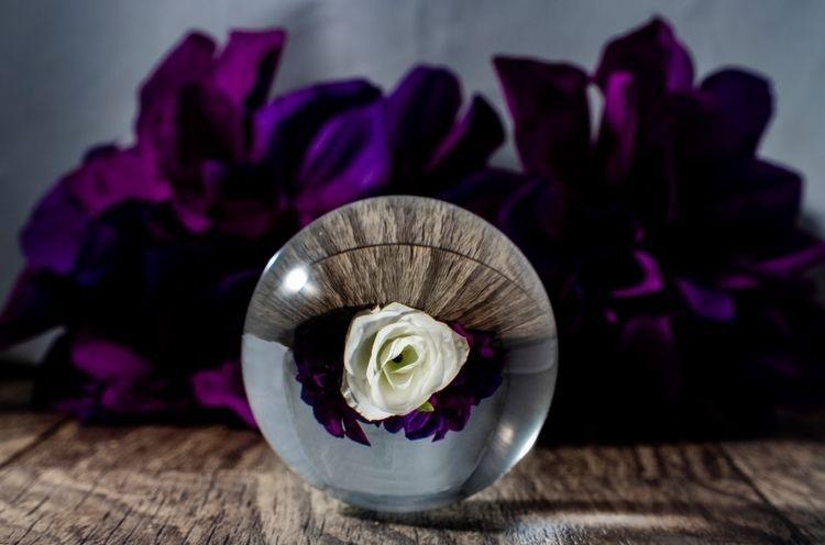 Crystal Flower photography stil - jbphotog9516 | ello