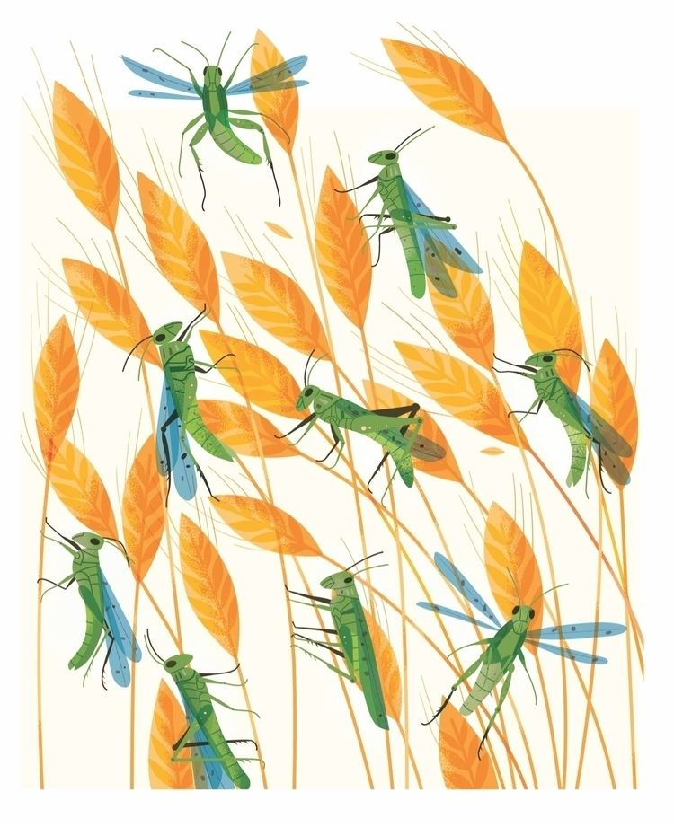 illustration article insects fo - studiogarcia | ello