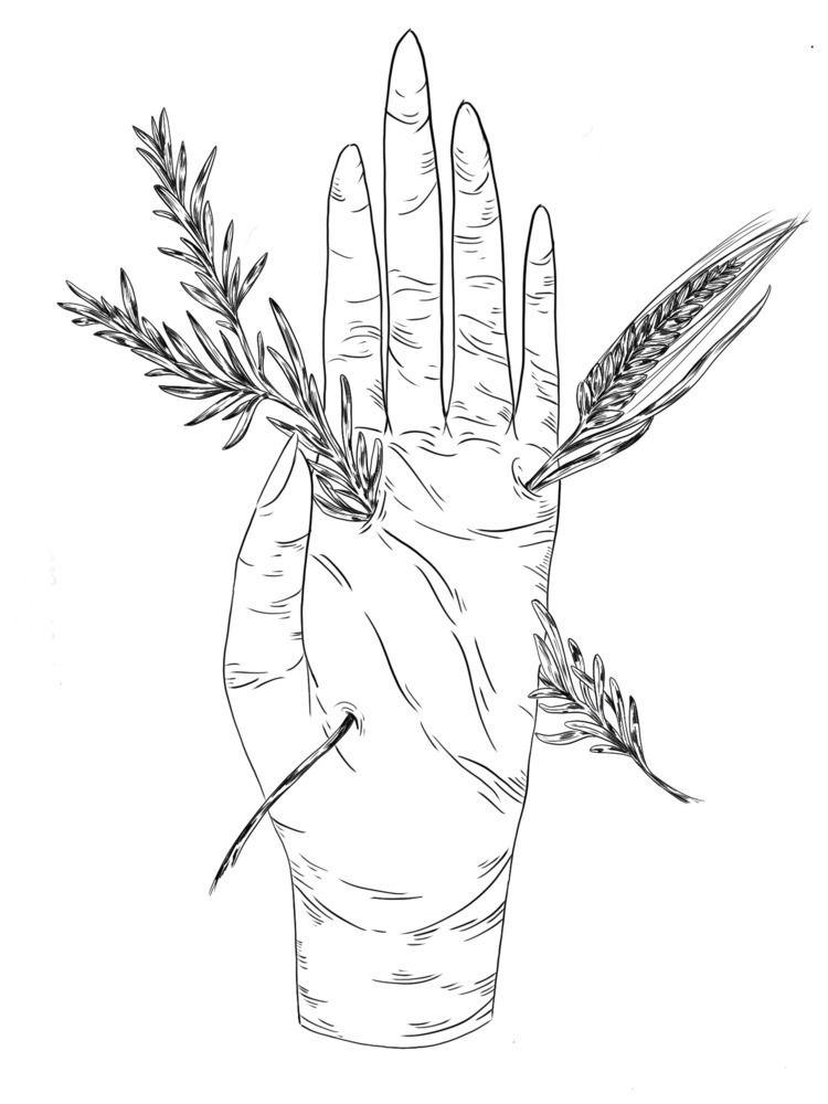 illustration collaboration Forn - carmenlew   ello