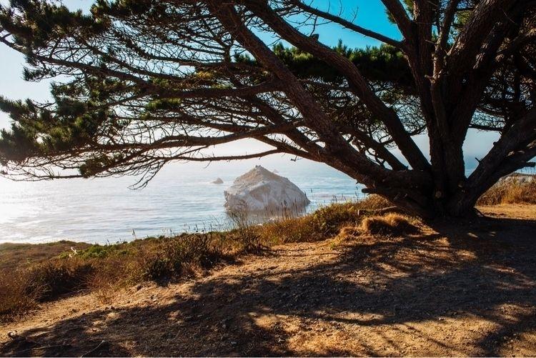 landscape, bigsur, california - taylormcintyre | ello