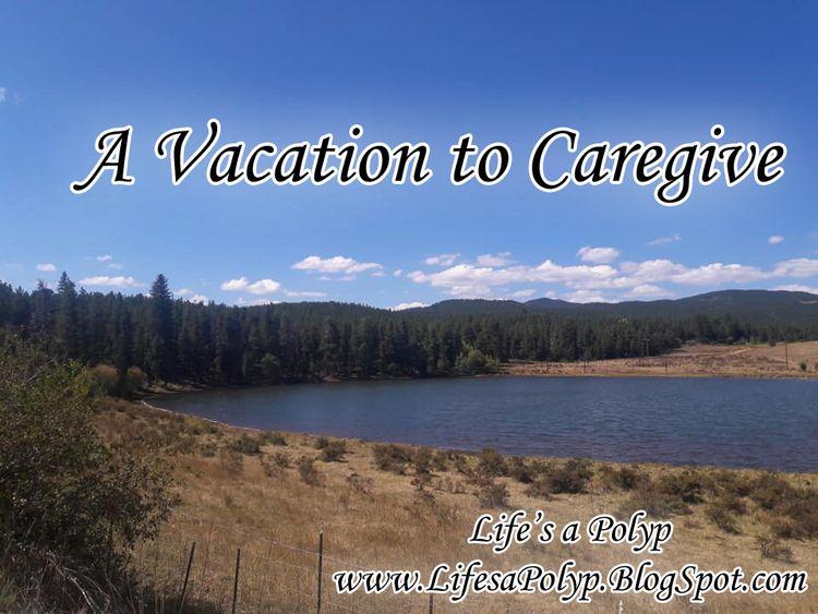 caregiving vacation coincide? t - lifesapolyp | ello