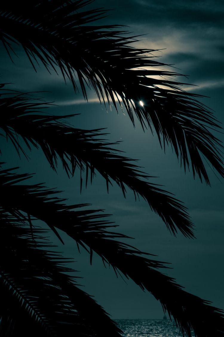 Disclosure - Moonlight - playlist - roquane | ello