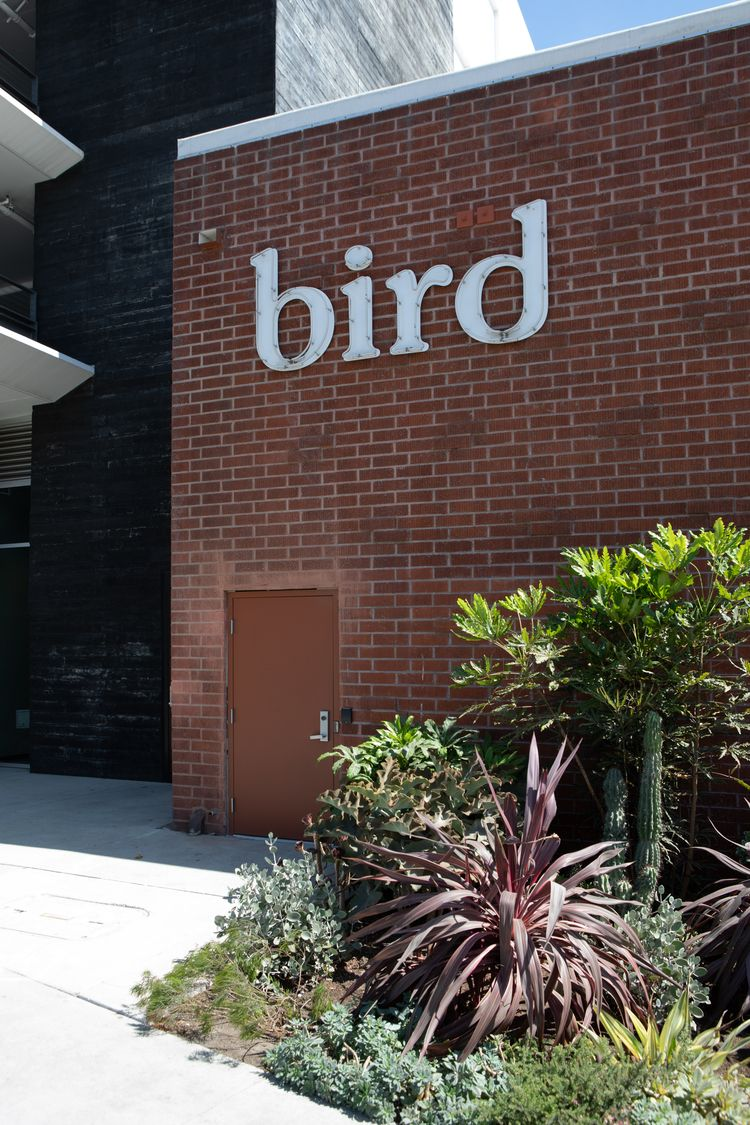Bird, Washington Blvd, Culver C - odouglas | ello