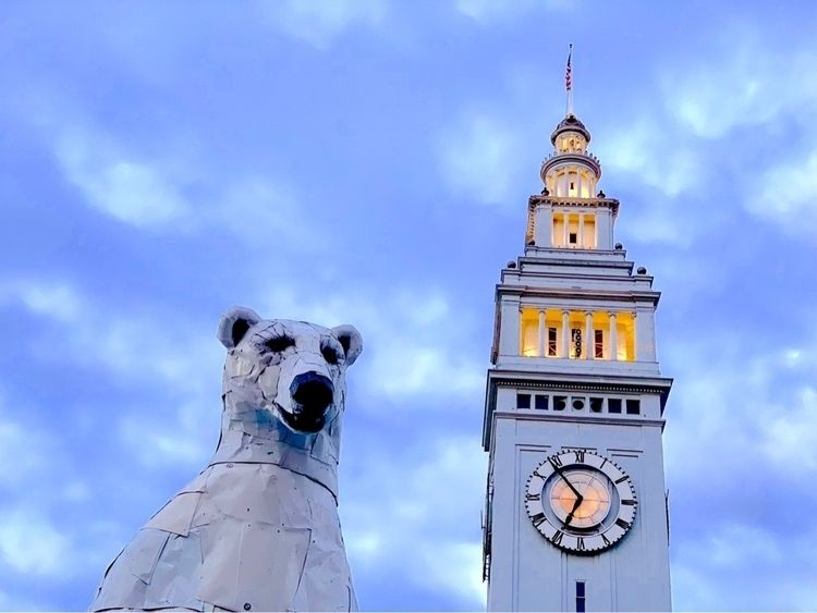 Polar Bear Ferry Building - shotoniphone - hollingsworth | ello