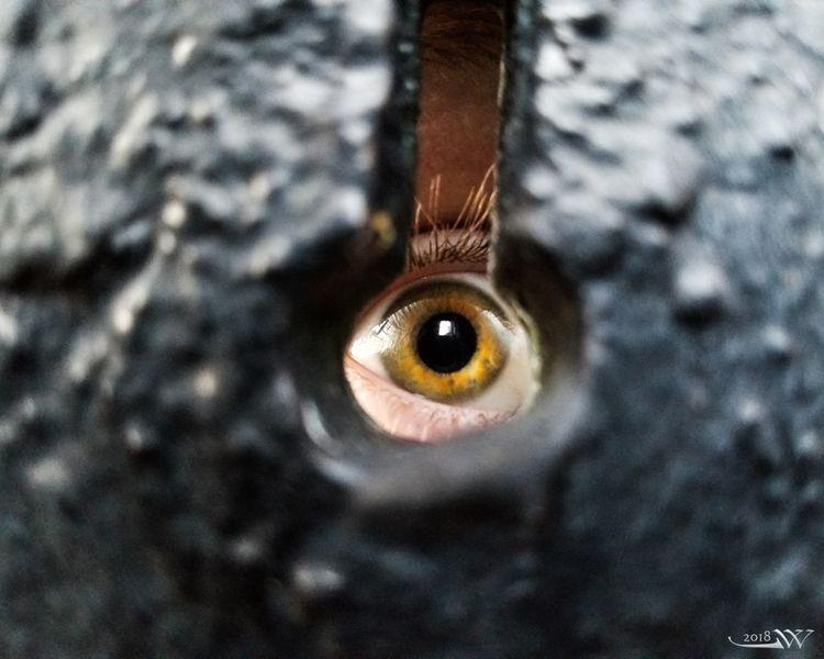 eye.spy - key - jwsubastra | ello