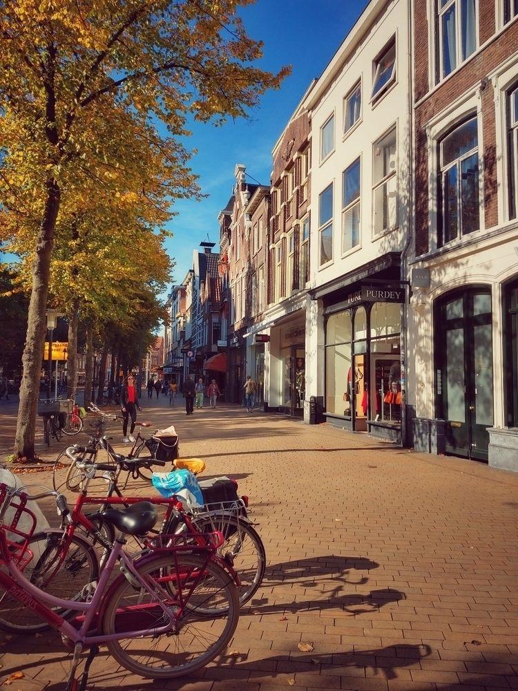 street, autumn, october, sun - claudio_g_c | ello