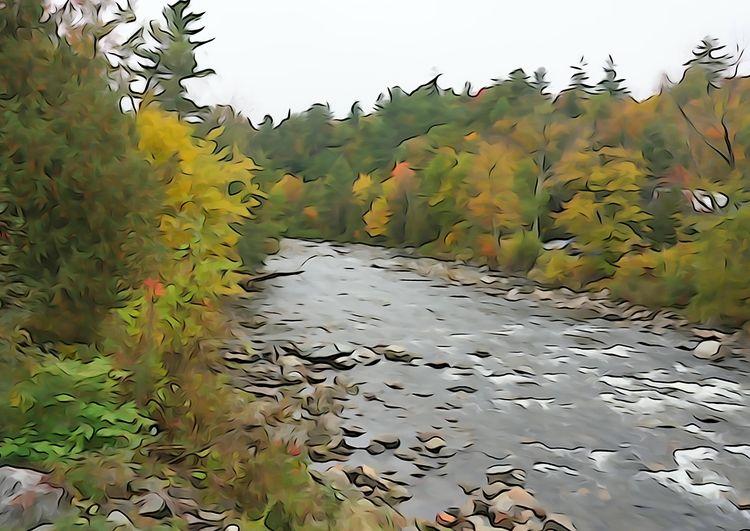 AuSable River - sony, sonycamera - coochdawg | ello