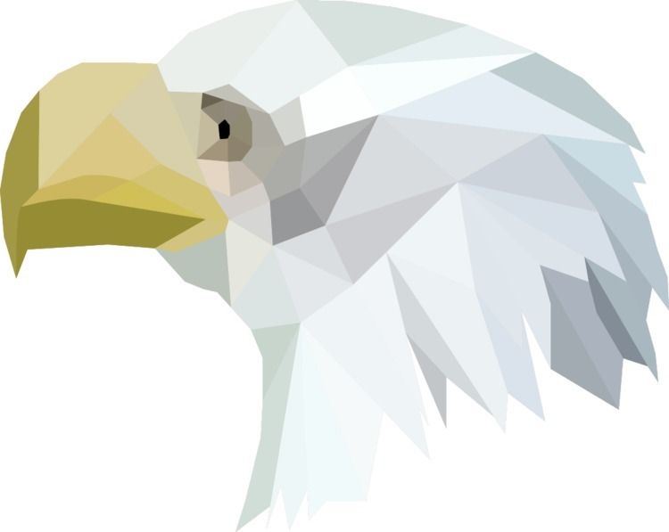 True North Bald Free - eagle, polyart - atelierwilfried | ello