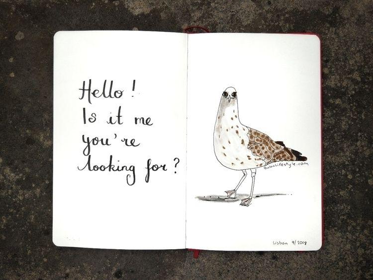 obsession seagulls. fella slide - bulanlifestyle | ello
