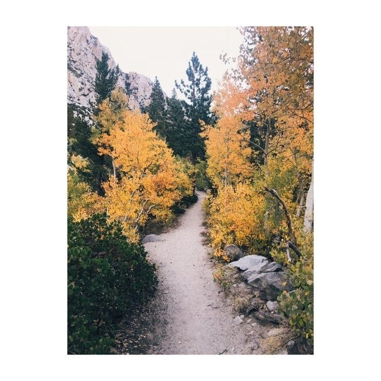 Fall colors explore - shotoniphone - ivankosovan | ello