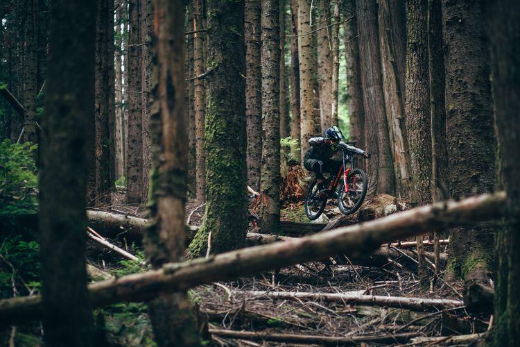 opportunity shoot actual legend - ridegradient | ello