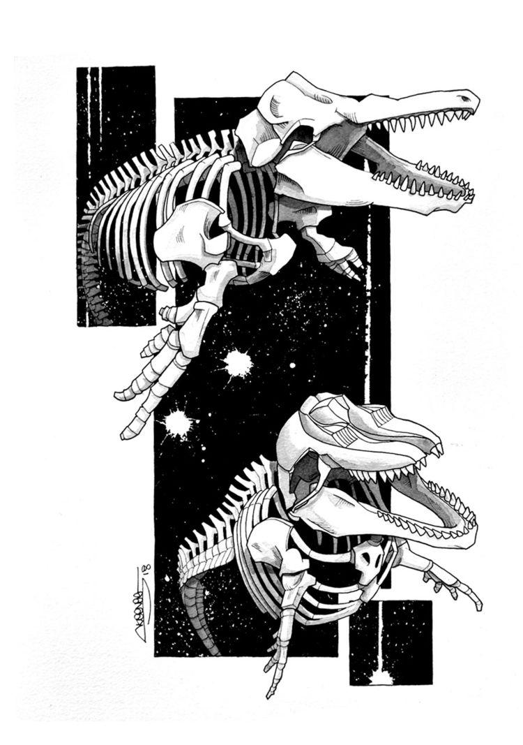 Orca Skeletons, Skeenee, Founta - skeenee | ello
