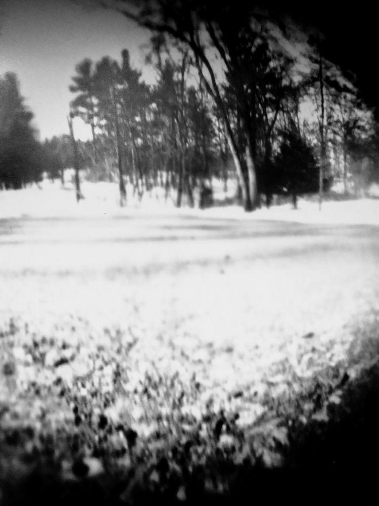 blurry bit guessing game cannis - graz-a | ello
