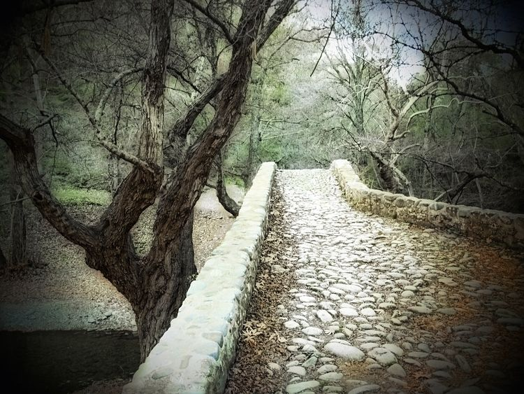 Kelefos bridge Paphos Forest, C - phil_levene | ello