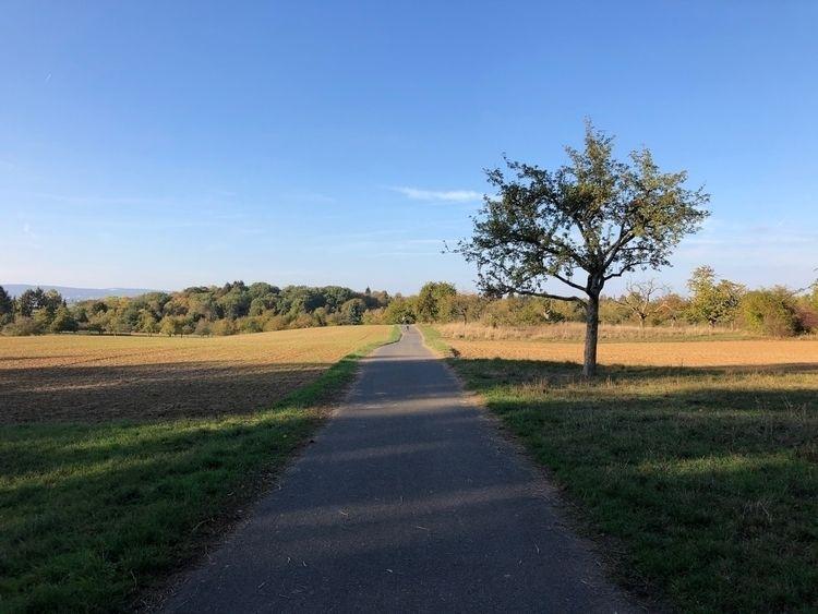 5k Sunday! Ran 5.07 kilometers  - rowiro | ello