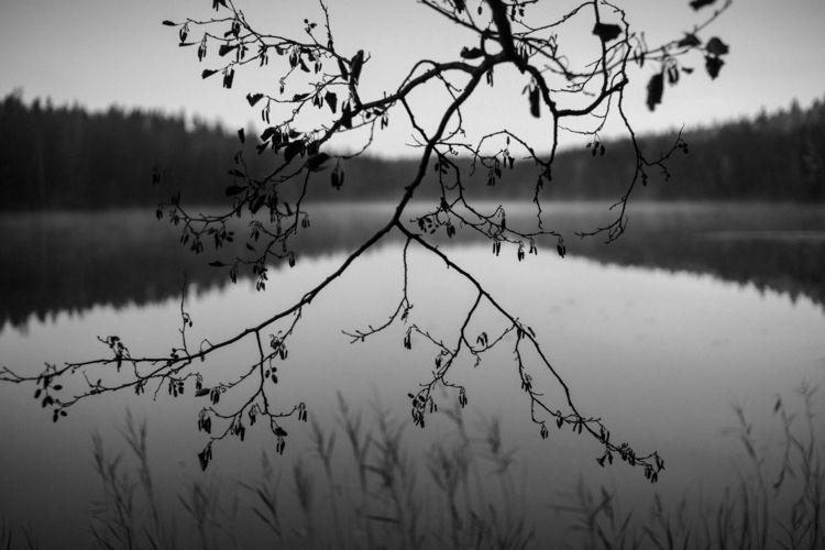 Lake Nuuksio national park, Fin - amiett   ello
