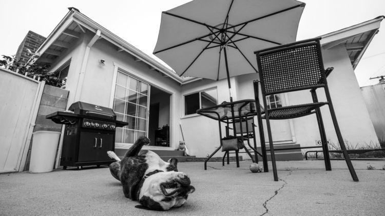 Inglewood, California: Abigail  - sr27pakbird | ello