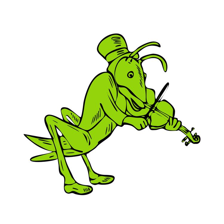 Grasshopper Fiddler Drawing - illustration - patrimonio | ello