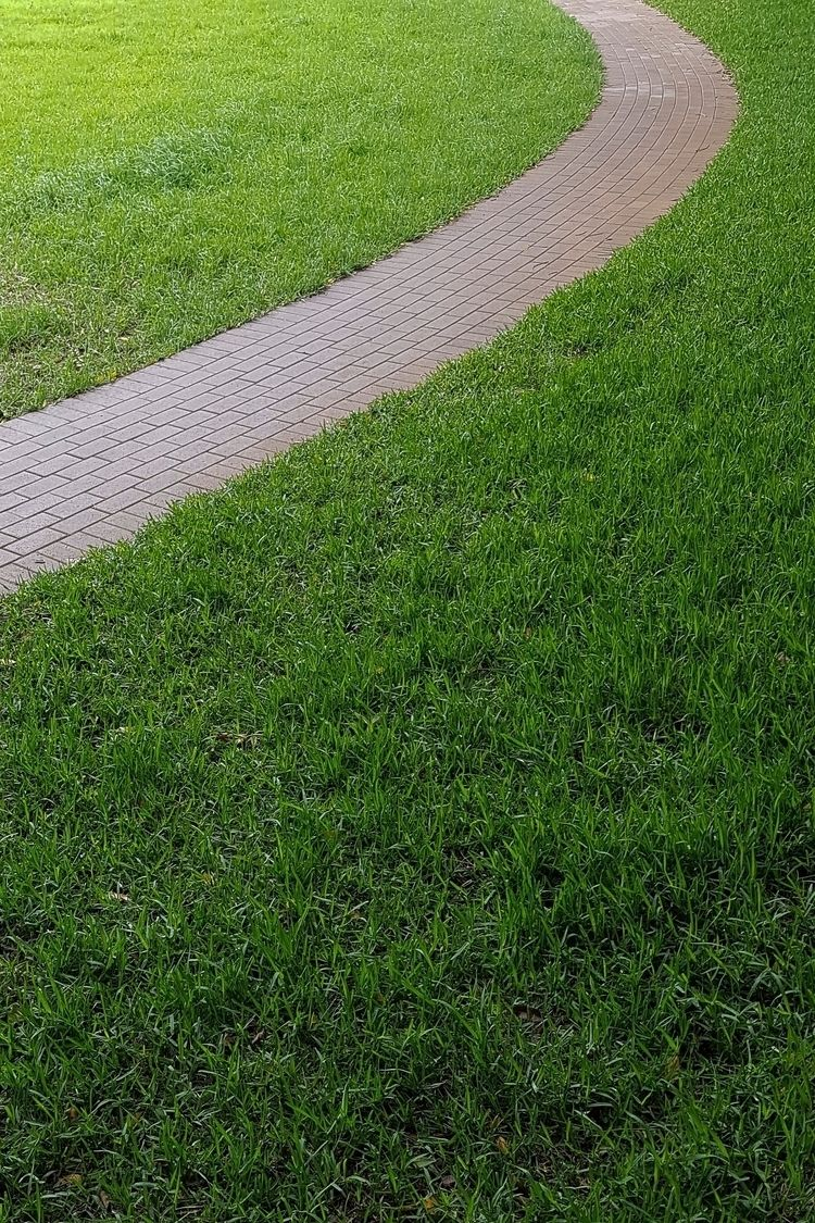 Garden path Technology Park. Sy - donurbanphotography | ello