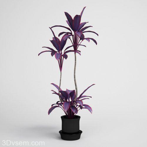 Beautiful Flower flower pot 3D  - c4ddownload | ello
