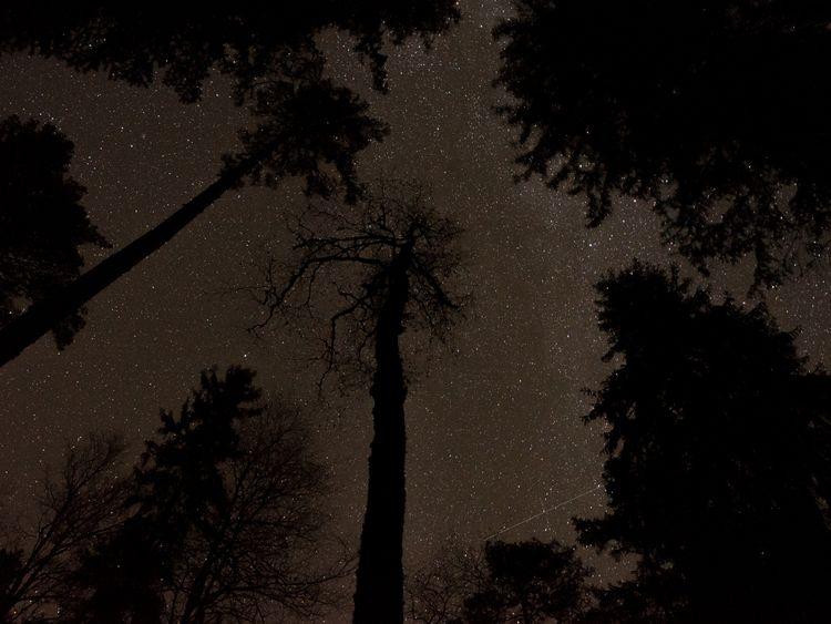 Night sky - Finland, camping, night - amiett   ello