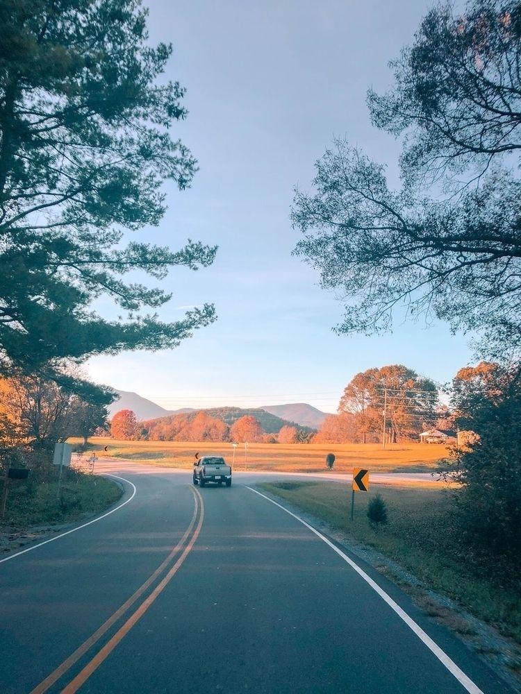 foliage peak year, advantage we - will_bones | ello