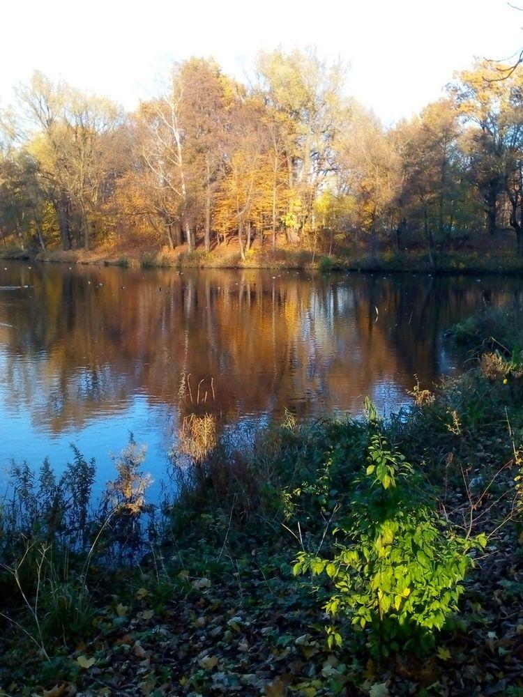 Autumn sunset lake - nature, city - igenvoicov | ello