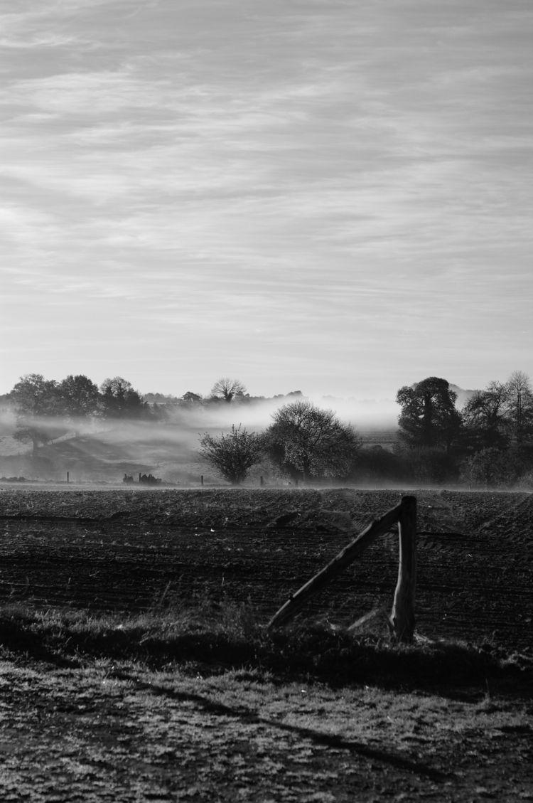 nature pictures Normandia - blackandwhite - vanloo | ello