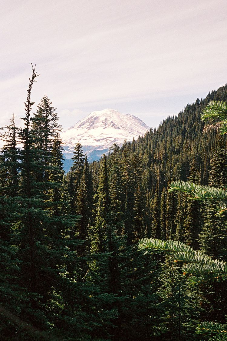 majestic Mount Rainier towers G - fieldmag | ello